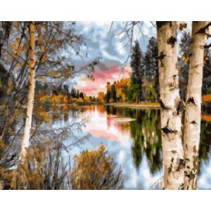 Картина по номерам 40х50 GX 23198 Березы у озера 40x50 см