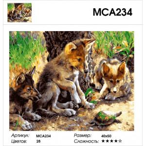 "МСА234 (GX27871) Картина по номерам ""Волчата и черепашка"" 40х50 см"