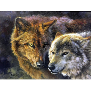 "GX24985 Картина по номерам ""Волк и волчица"", 40х50 см"