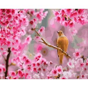 Картина по номерам 40х50 GX 28937 Птичка в цветах 40x50 см