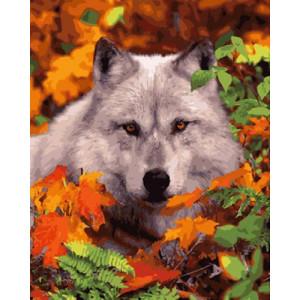 Картина по номерам 40х50 GX 29013 Белая волчица 40x50 см