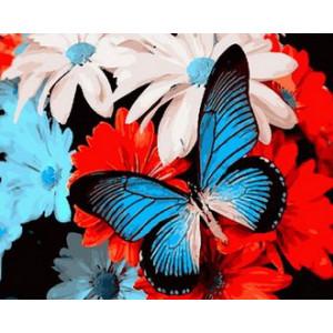 Картина по номерам  GX 29329 Бабочка 40x50 см