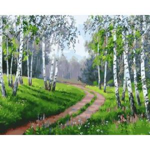 Картина по номерам 40х50 GX 29341 Лесная дорога 40x50 см