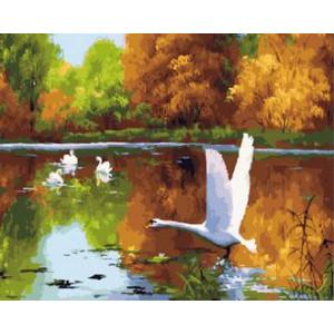 Картина по номерам 40х50 GX 29778 Белые лебеди 40x50 см
