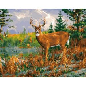 Картина по номерам 40х50 GX 29788 Олень 40x50 см