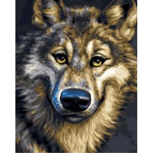 Картина по номерам 40х50 GX 29838 Смешной волк 40x50 см