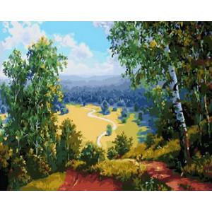 Картина по номерам 40х50 GX 29909 Тропинка через поле 40x50 см