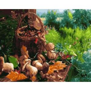Картина по номерам GX 30136 Лесной урожай 40x50 см