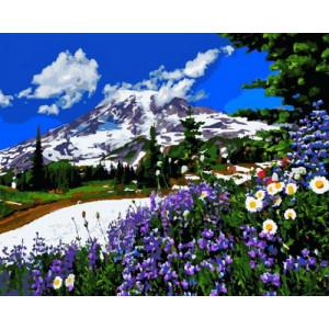 Картина по номерам 40х50 GX 30386 Горная полянка 40x50 см
