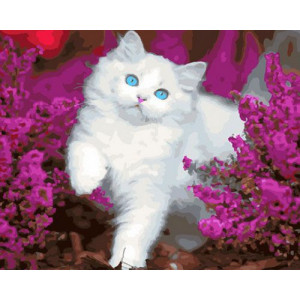 Картина по номерам 40х50 GX 30408 Белая кошечка