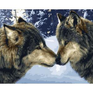 Картина по номерам 40х50 GX 30431 Волчьи чувства 40x50 см