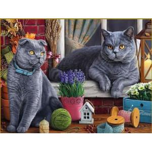 Картина по номерам 40х50 GX 30549 Британские кошки 40x50 см