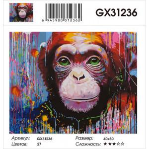 GX31236 картина по номерам  Шимпанзе 40x50 см