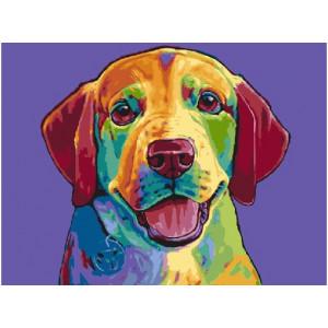 """МСВ51 (ЕX6241) Картина по номерам """"Цветной пес"""" 30х40 см"""