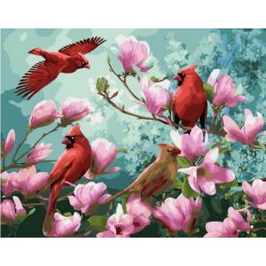 """MCA1405 Картина по номерам """"Птицы на ветках магнолии"""", 40х50 см"""