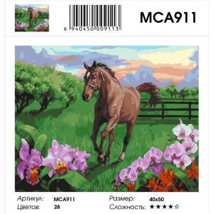 "MCA911 Картина по номерам ""Скакун на лугу"" , 40х50 см"