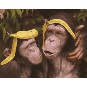 "MCA984 Картина по номерам ""Пара обезьянок"",  40х50 см"