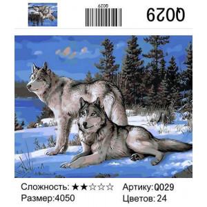 """GX9925 Живопись по номерам """"Березовый лес"""", 40х50 см"""
