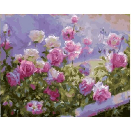 """GХ23227 Картины по номерам """"Розовый куст"""", 40х50 см"""