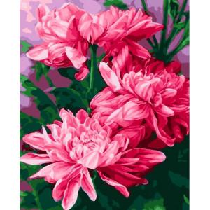 "GХ23053 Картина по номерам ""Хризантемы"", 40х50 см"