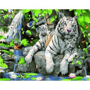 """GX23058 Картина по номерам """"Семейство белых тигров"""", 40х50 см"""
