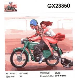 """GX23350 """"Собака гонится за моциком"""", 40х50 см"""