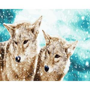 """GX23797 """"Волчья пара под снегом """", 40х50 см"""
