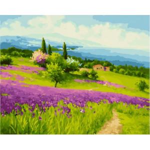 """GX23893 Картина по номерам """"Цветущий склон"""", 40х50 см"""