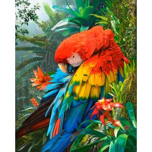 Картина по номерам 40х50 GX 24019 Попугай ара