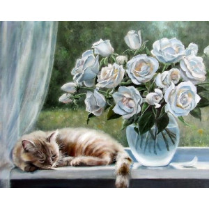 "GX24633 ""Белые розы на окне и рыжий кот"", 40х50 см"