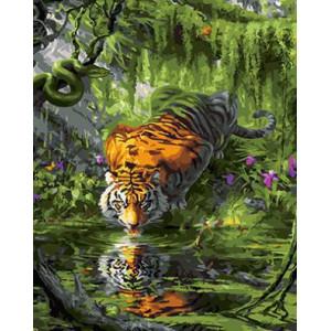 "GX24841 ""Тигр лакает воду"", 40х50 см"