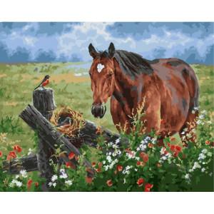"GX25107 Картина по номерам ""Лошадка на лугу"", 40х50 см"