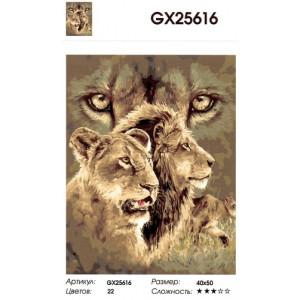 "GX25616 ""Львиная пара"", 40х50 см"