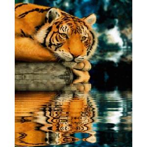 Картина по номерам 40х50 GX 26065 Тигрица у воды