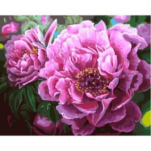 """GX4667 Картина по номерам """"Роскошные пионы"""" 40х50 см"""