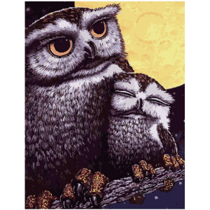 "GX5351 Картина по номерам ""Сова с совенком"", 40х50 см"
