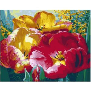 """GХ21362 Картины по номерам """"Красные и желтые цветы"""", 40х50 см"""