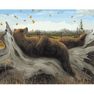 "GX5716 Картина по номерам ""Медведь и бабочки"", 40х50 см"