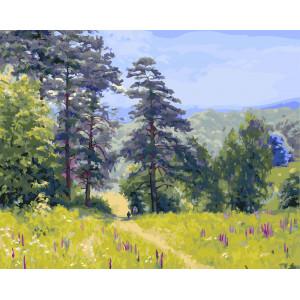 "GX5782 Картина по номерам ""По лесной тропинке"", 40х50 см"