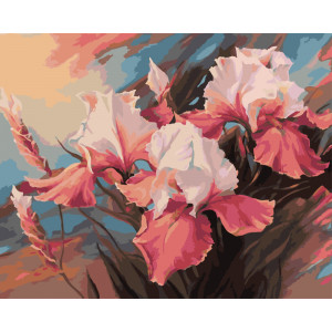 "GX5802Картина по номерам ""Розовые ирисы"", 40х50 см"