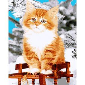 """GХ4088 """"Рыжий котенок"""" , 40х50 см купить в Омске недорого"""