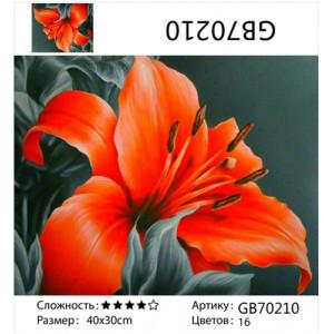 "АМ34 GB70210 алмазная мозаика ""Алая лилия"", 30х40 см"
