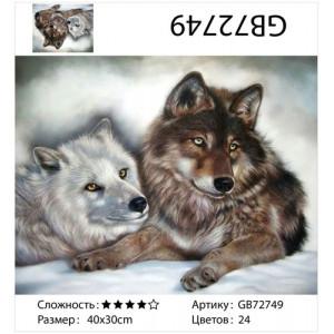 """АМ34 GB72749 алмазная мозаика  """"Пара волков лежит на снегу"""", 30х40 см"""