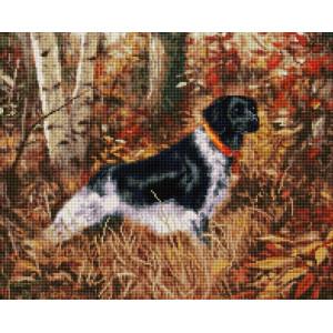 """UА171 Алмазная мозаика на подрамнике """"Охотничья собака"""" 40х50 см"""