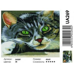 """UA269 Алмазная мозаика на подрамнике """"Зеленоглазый кот"""",   40х50 см"""