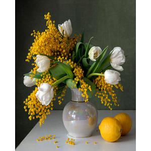 Картина по номерам 40х50 GX 21003 Тюльпаны и мимозы