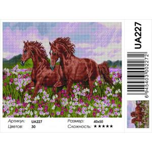 "UА227 Алмазная мозаика на подрамнике ""Свобода движения"" 40х50 см"