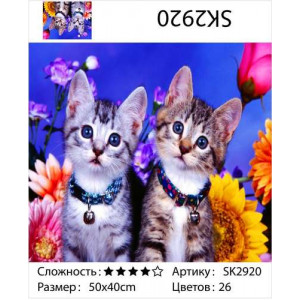 "АКВ45 SK2920 ""Два котенка на синем фоне"", 40х50 см"