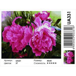 """UA331 Алмазная мозаика на подрамнике """"Розовые пионы"""",   40х50 см"""