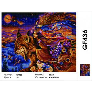 "GF436 Алмазная вышивка на подрамнике ""Летящая на рыси"" , 40х50 см"